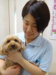 動物看護師 新福 絵理(しんぷく えり)